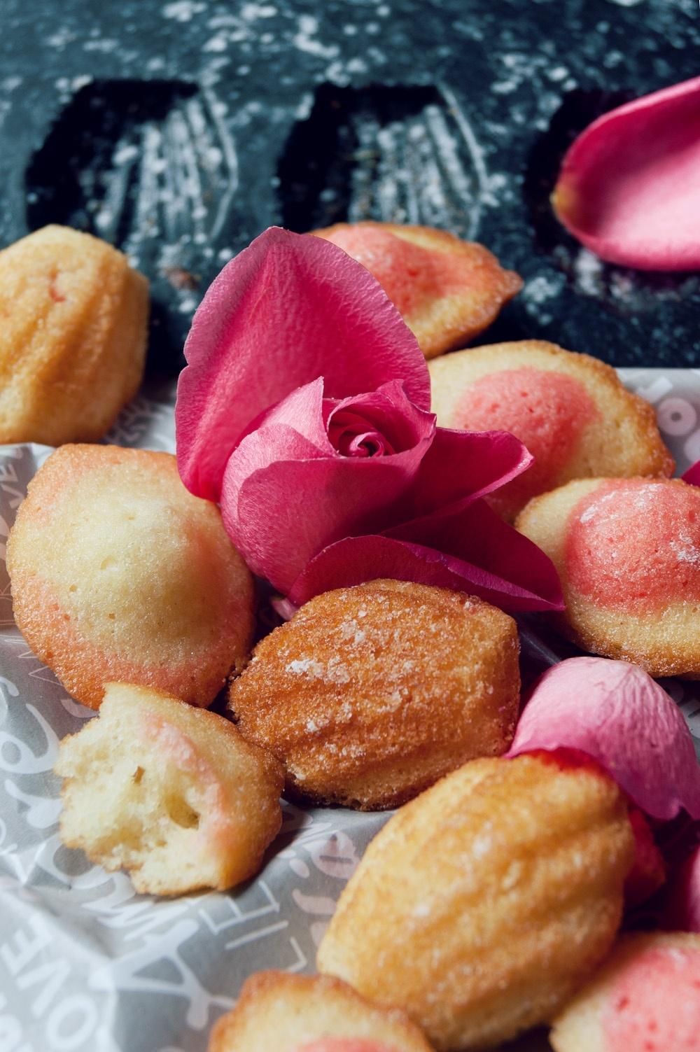 Madeleines bicolores 4 - Qui a volé les tartes - Studio 2 création
