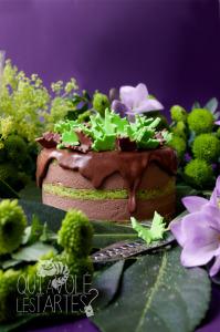 La Fée Verte - Recette royal chocolat noir & fée verte (absinthe) ©Photographie et stylisme culinaire Qui a volé les tartes ?